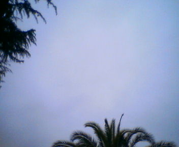 空を見上げると